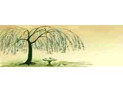 新国学-简本-2006稿 ()