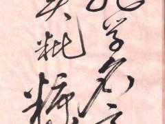 祖龙虽死秦犹在, 孔学名高实秕糠。 ()