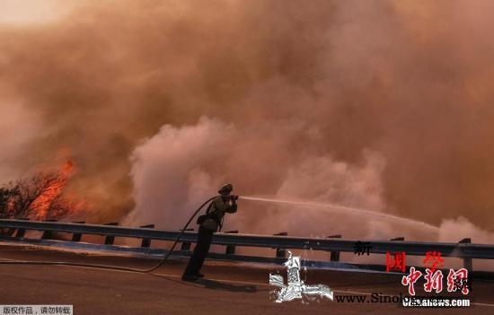 加州山火死亡人数升至42人造成损失逾_洛杉矶-加州-山火-