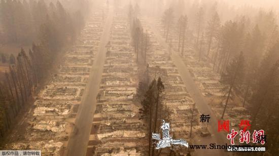 美加州山火遇难人数升至63人逾600_加州-山火-搜救-