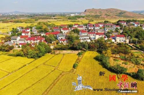 17部门发文促进乡村旅游让农民分享旅_乡村-区域-农民-