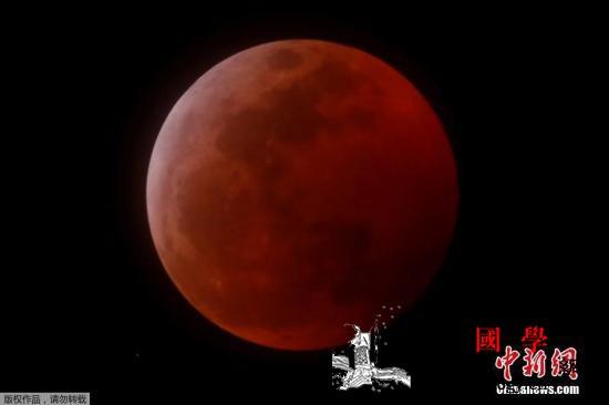 """""""超级血狼月""""震撼登场!快看史诗级的_远地点-月全食-月亮-"""