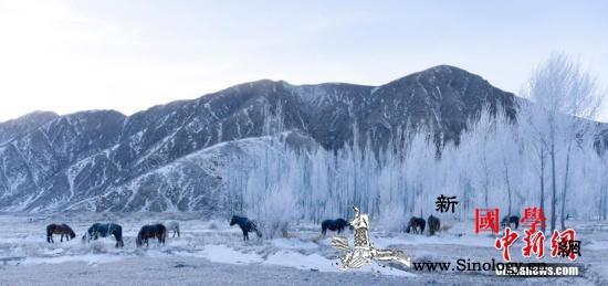 新疆内蒙古气温下降中国中东部地区将有_南疆-西藏-等地-