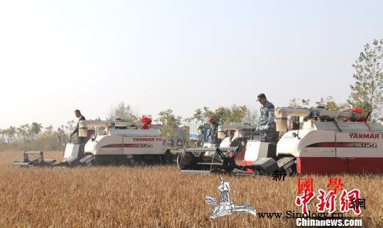 七部门:到2022年高中以上文化程度_农产品-兴农-农民-