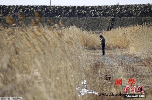 东日本大地震8周年:逾5万灾民仍在等_震灾-遇难者-核电站-