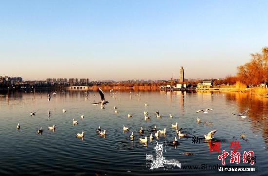 """北京本周仅剩1天温暖明起气温""""打对折_祭扫-回升-北京-"""