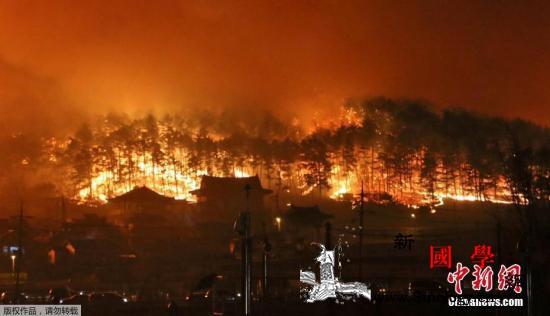"""韩国江原道山火破坏巨大政府宣布""""国家_山火-火势-韩国-"""