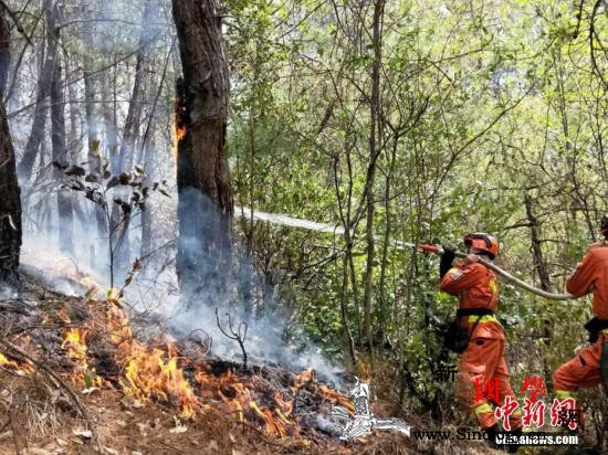 四川凉山州冕宁县森林大火已扑灭转入清_冕宁县-扑救-攀枝花-
