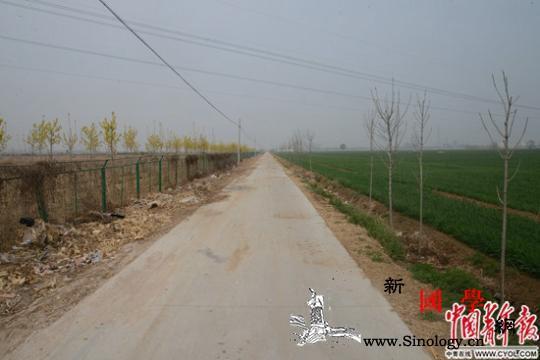 告不倒的村支书:兄弟用砖砸低保户将村_任县-粮站-耕地-