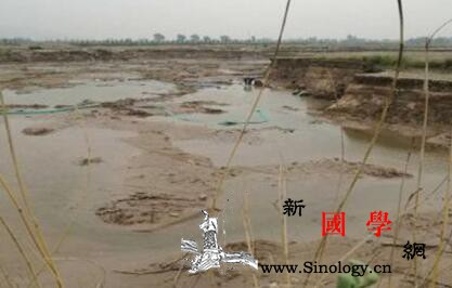 中央环保督察:黄河湿地保护区违规开发_渭南市-合阳县-黄河-