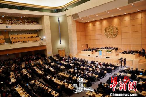 第72届世界卫生大会在瑞士日内瓦开幕_日内瓦-瑞士-会在-