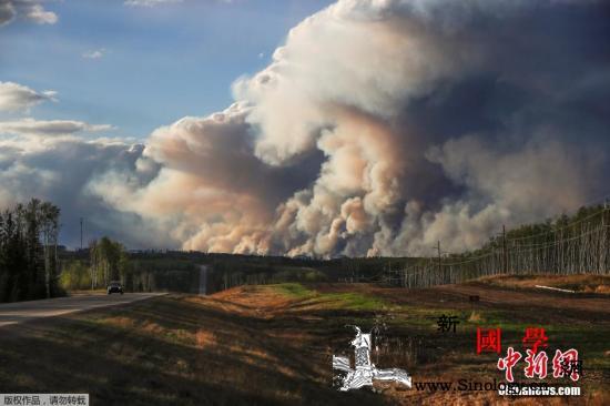 加拿大油气资源大省山林野火蔓延已逾4_麦克-野火-加拿大-
