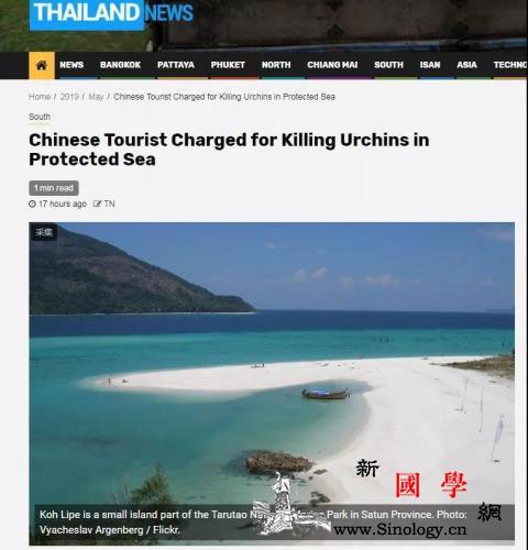 """中国游客在泰国""""杀死""""海胆被诉?真相_曼谷-海胆-泰国-"""