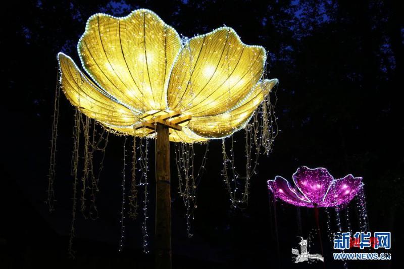 自贡彩灯闪耀罗马尼亚锡比乌国际戏剧节_罗马尼亚-彩灯-闪耀-戏剧-