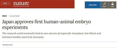 用动物胚胎培育人类移植器官面对的是理_胚胎-移植-伦理-