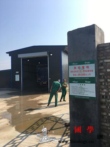 养猪企业走访:母猪存栏目标调高5成项_向阳-存栏-养猪场-