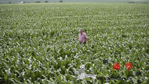 农业农村部官员:美农业州访问行程调整_华盛顿-磋商-经贸-