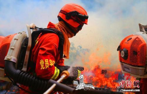 全国拟招录超2.1万余名消防员报名人_消防员-救援-招录-