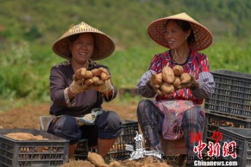 晒晒中国减贫成绩单:这些变化你感受到_毕节市-紫云-贵州省-