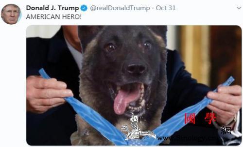 出名了!特朗普授予勋章后这类犬只身价_一枚-勋章-巴格达-