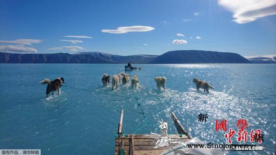 还说气候危机不存在?超1.1万名科学_瓦尔-格陵兰岛-冰川-