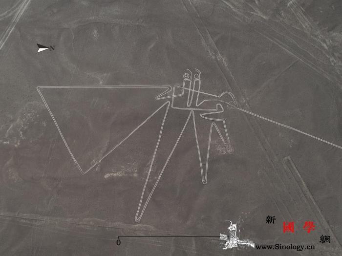 日本团队新发现143条纳斯卡线形似人_山形-日本-图为-