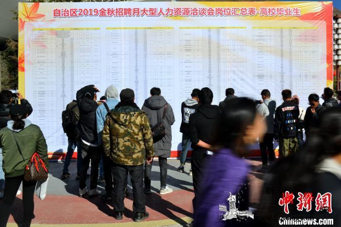 西藏举行大型招聘会提供3500余个就_洛桑-展板-图为-