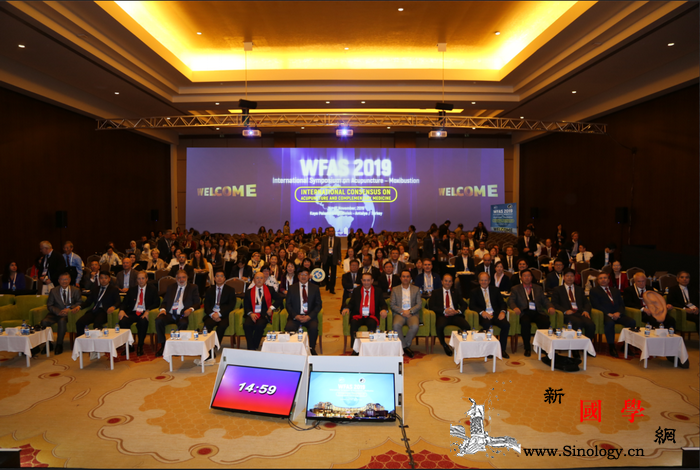 世界针联2019国际针灸学术研讨会在_土耳其-传统医学-针灸-世界卫生组织-