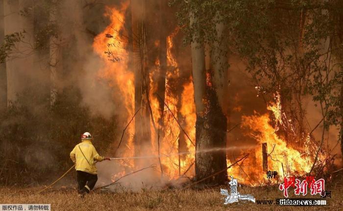 澳大利亚林火肆虐多地遭烟霾笼罩_霍尔-悉尼-紧急状态-