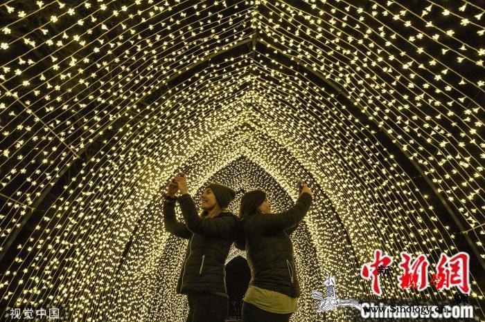 英国皇家植物园上演圣诞节限时灯光秀美_圣诞-圣诞节-英国皇家-
