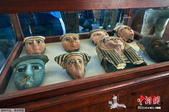 埃及出土罕见幼狮木乃伊及世上最大圣甲_开罗-埃及-甲虫-