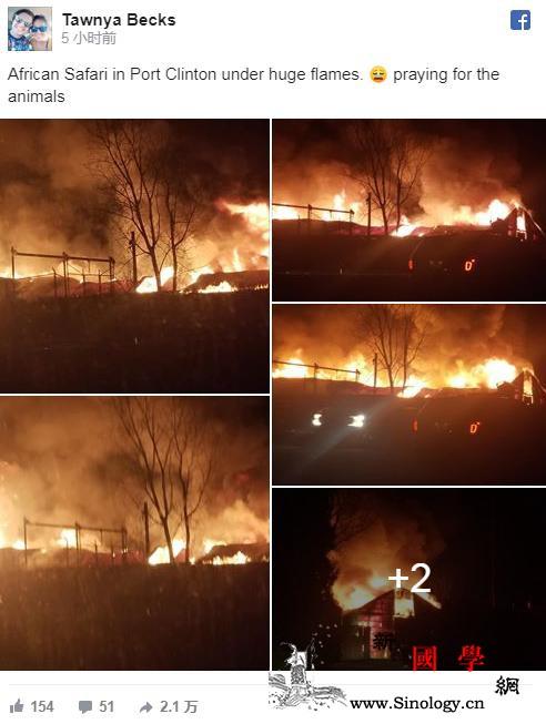 美国一动物园突发大火长颈鹿、羚羊等1_拉莫斯-俄亥俄州-克林顿-