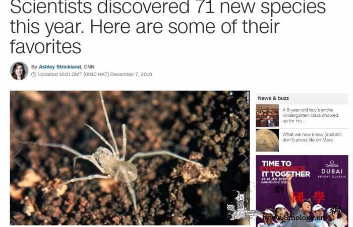 地球还有多少秘密?今年又有71种新_蜥蜴-美国-蜘蛛-