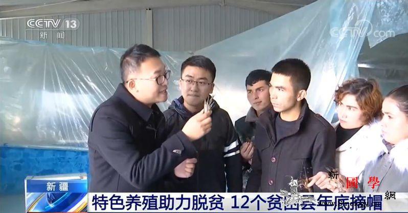 新疆特色养殖助力脱贫12个贫困县年底_阿克陶县-脱贫-柯尔克孜-