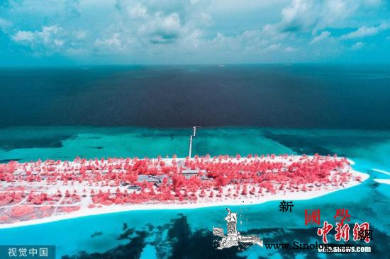 谷歌公布美国2019年十大热搜旅游景_马尔代夫-拉斯维加斯-美国-