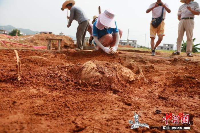 2019年中国开展中外联合考古项目4_乌兹别克斯坦-遗址-考古-