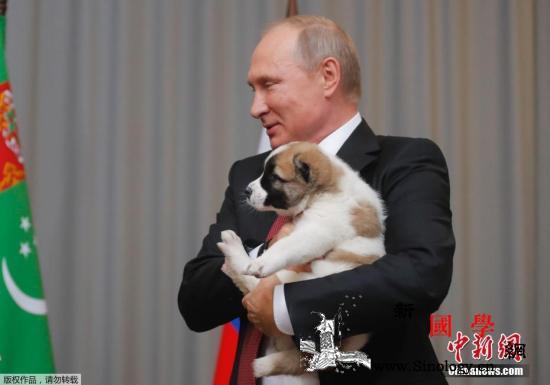 你的新年愿望是什么?普京帮10岁小男_乌拉尔-里海-阿富汗-