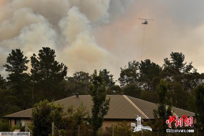 澳大利亚多地再现40度高温山火恐危及_艾略特-悉尼-山火-