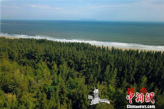 中国2019年造林1.06亿亩202_防护林带-抚育-造林-