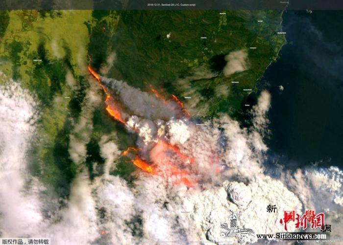 澳大利亚林火持续延烧影响大巴西检测到_智利-山脉-巴西-