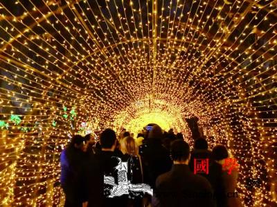 中国彩灯点亮纽约冬夜_斯坦-纽约-彩灯-美国-