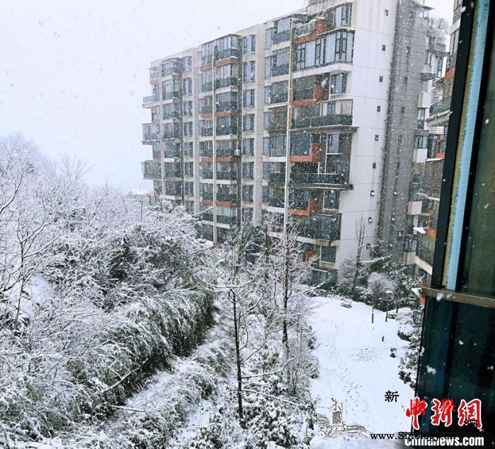 """多地开启大雪""""模式""""贵州启动抗凝冻Ⅳ_凝冻-贵州-雪景-"""