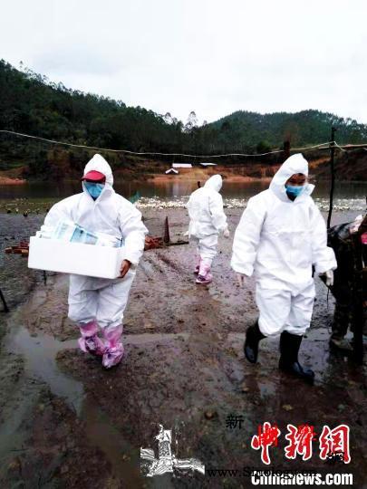 广西新冠肺炎确诊病例增至235例防控_河池市-平果县-广西-