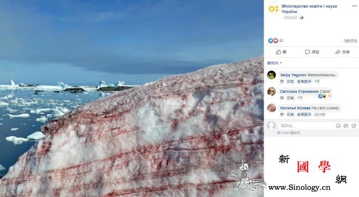 乌克兰南极站现红色积雪网友:西瓜味还_乌克兰-画中画-藻类-