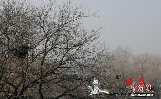 3月京津冀大气污染扩散条件整体偏差_扩散-西南地区-同期-