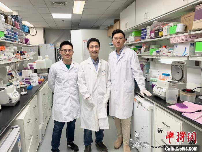 中国科研人员新研究为治疗青光眼、帕金_脑科学-穆勒-细胞-