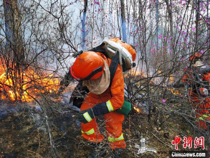 内蒙古大兴安岭林区两起雷击火已全部扑_火场-图为-森林-