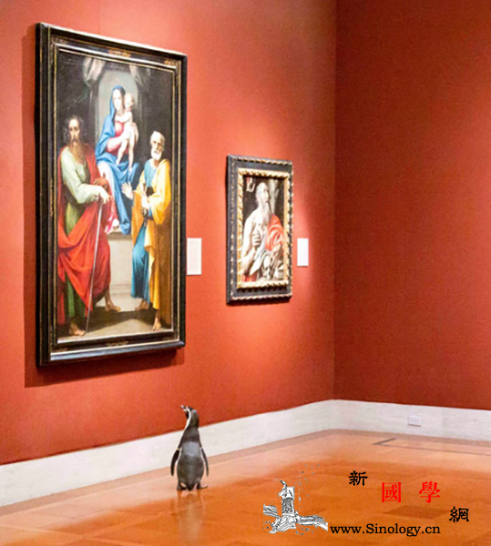 美艺术博物馆安排企鹅参观艺术名作_堪萨斯-开普敦-企鹅-巴洛克-