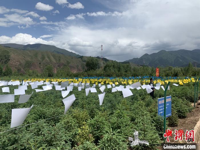 青海:提升全省有害生物联防联控能力建_青海省-藏族-林业-
