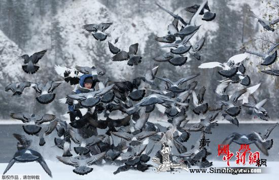 北极圈内最热!俄西伯利亚小镇出现38_西伯利亚-莫斯科-俄罗斯-